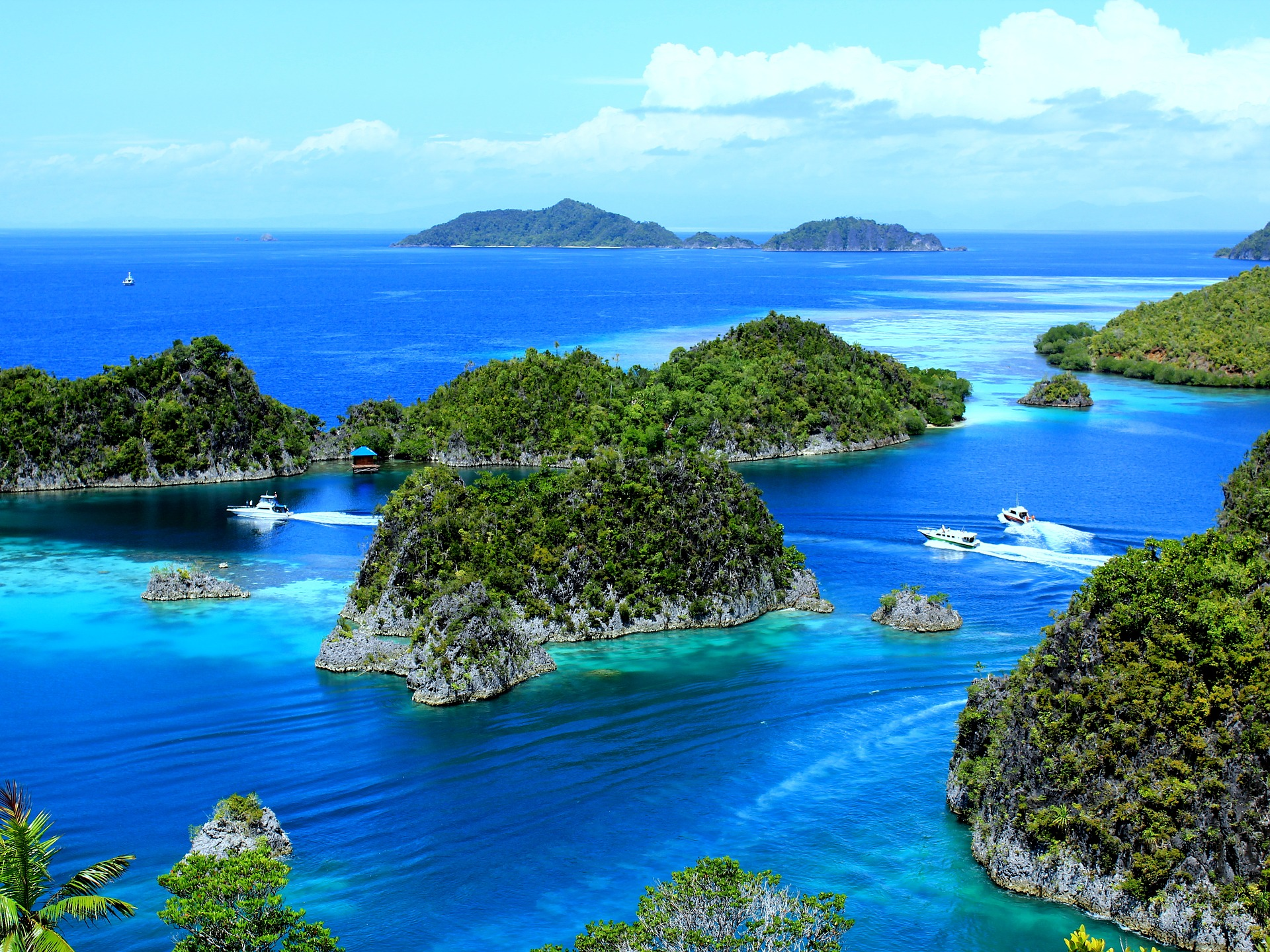 Raja Ampat, Indonesia - Image by Ady Arif Fauzan from Pixabay