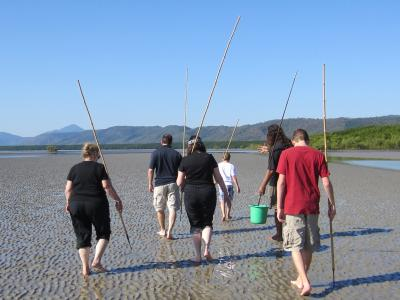 Spear fishing on the mudflats in Cairns, Australia